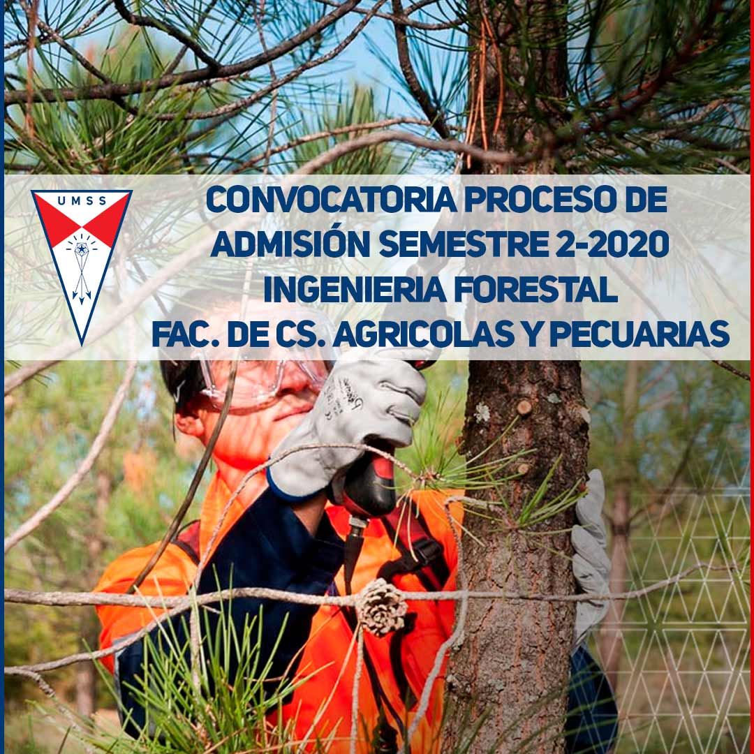 Blog-Admision-2-2020-IngForestal